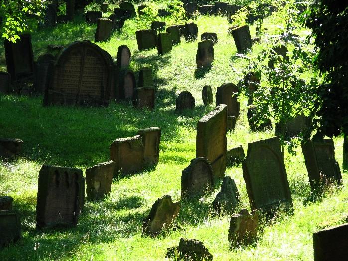 Die Auferweckung der Toten nach dem Koran
