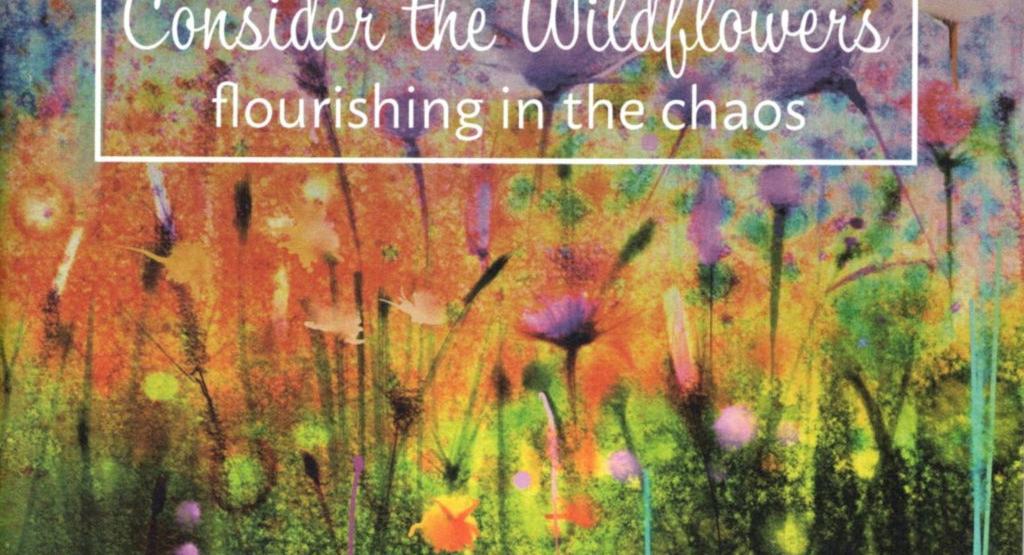 Betrachte die Wildblumen